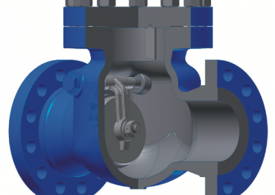 Swing Check Valves [CSEN]